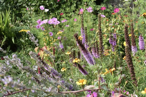 'Look upon Verdure': Garden Talk